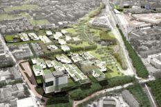 Il nuovo Parco Novello a Cesena