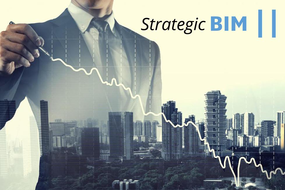 Strategic BIM